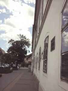 3.ábra_múzeumkert